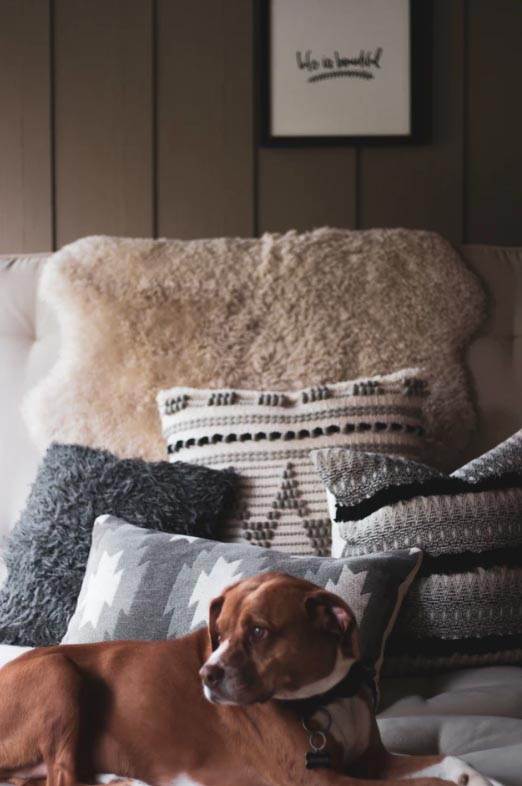 How to make your living room cosy this autumn